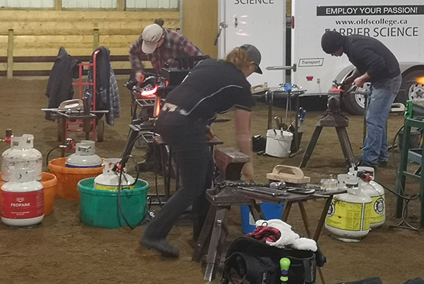Farrier Group Dominates