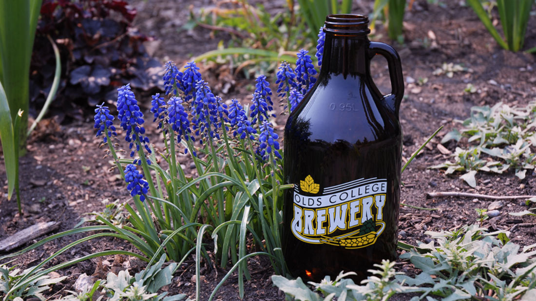 Brewery bottle in flower bed